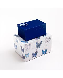 BOX BUTTERFLY SMALL 6X4X3.25